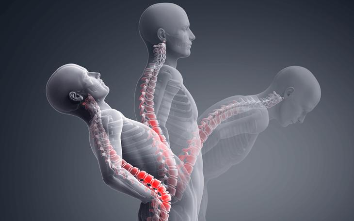 Kinesiología para Fisioterapeutas