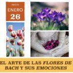 El arte de las flores de Bach y sus Emociones